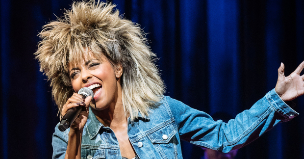 Tina Turner the Musical